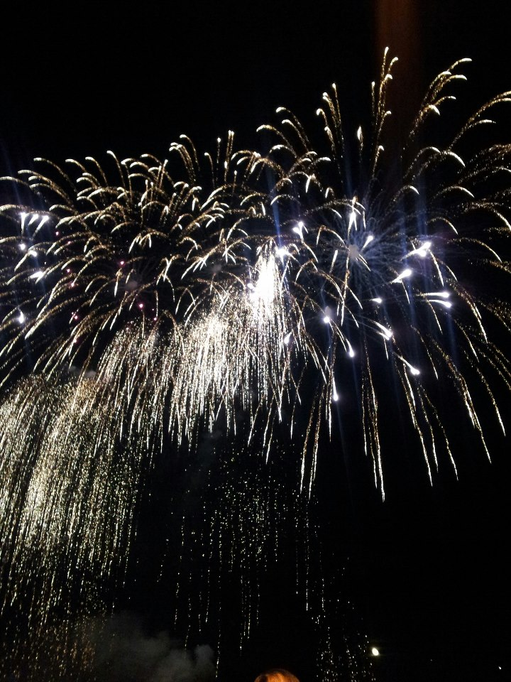 A burst of fireworks, cascading in the night sky