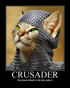 Crusader Kitty